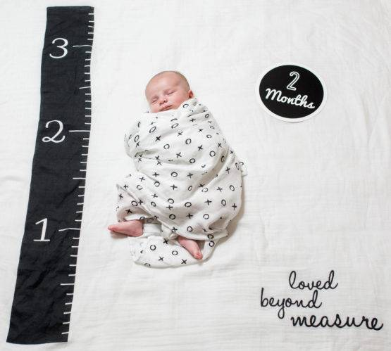 Baby's First Year blanket & Cards Sets – Loved Beyond Measure